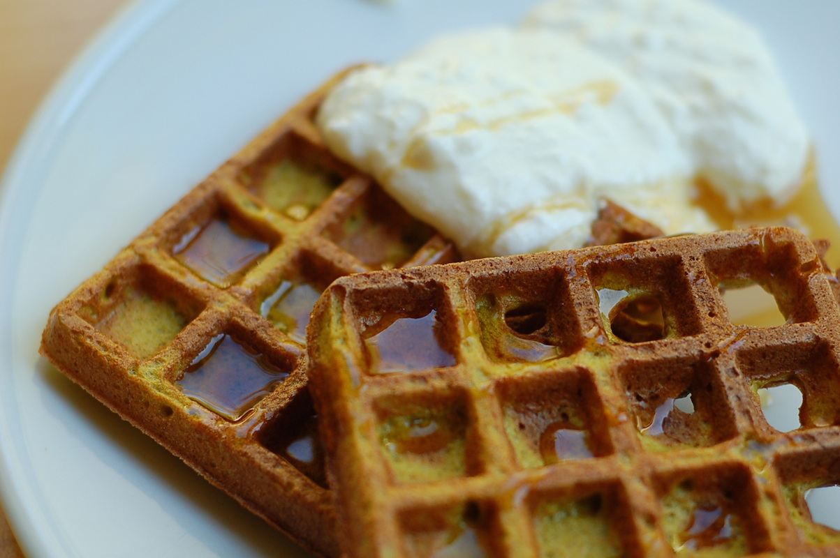 Using your starter: blender sourdough veggie waffles