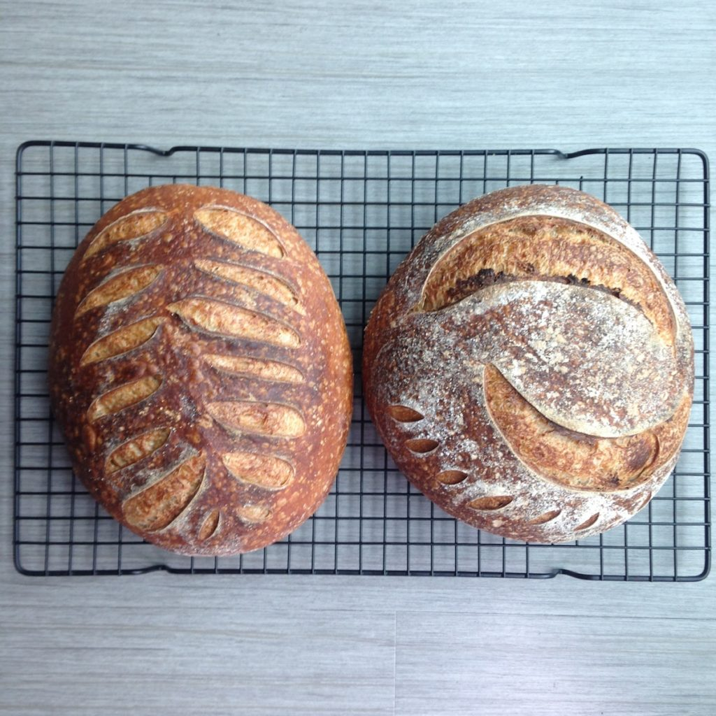 Sourdough loaves